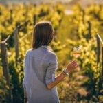 ViniPortugal