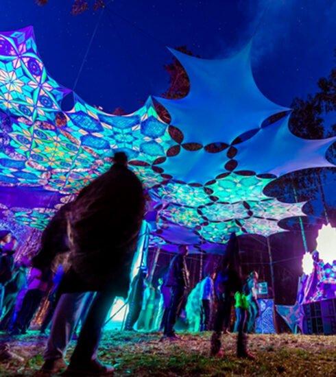 Vibronica Festival
